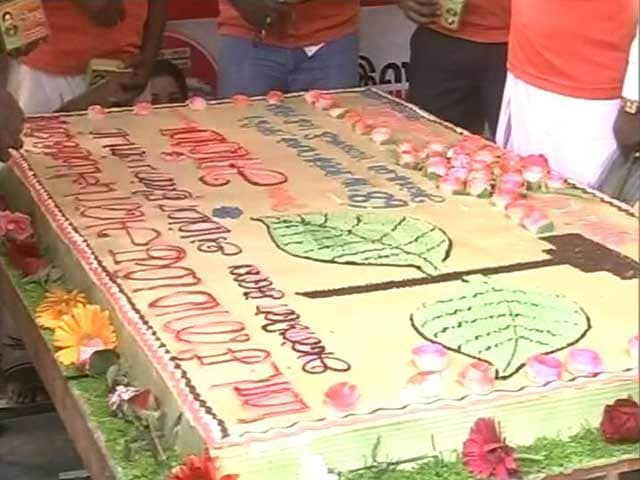 Video : Queen-Size Birthday Celebrations For Jayalalithaa. But Where Is She, Asks DMK