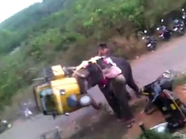 Video : Elephant Goes Berserk In Kerala, Flings Motorbikes, Autos