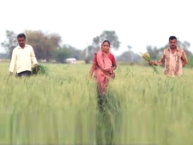 Video : Financial Crisis Being Faced by Farmers in India