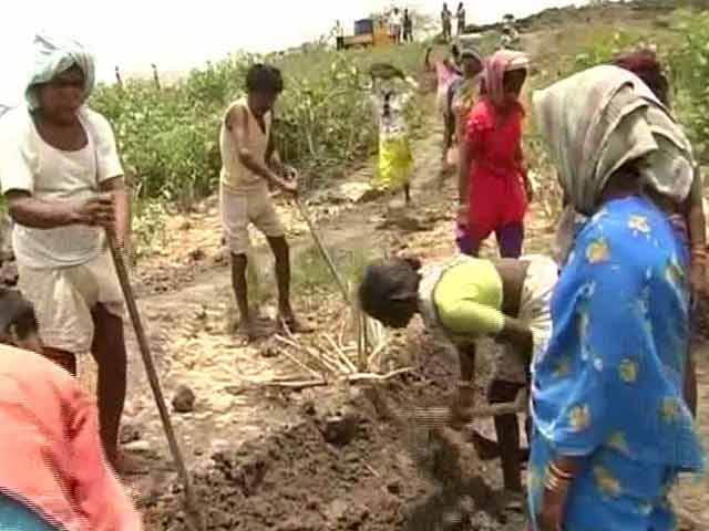Video : 'We Have Neither Food Nor Water': Drought And Despair In Telangana