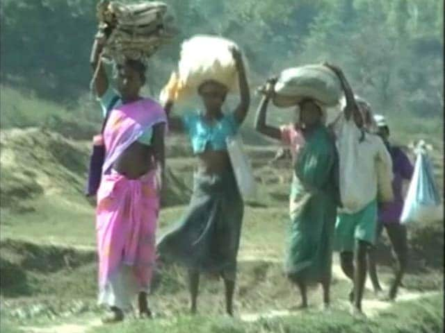 Video : No Power Or Roads Ever And Now, No Water In This Jharkhand Village