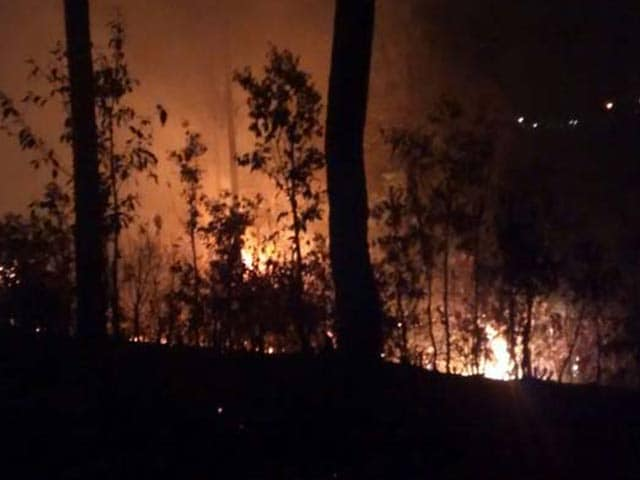 Video : Uttarakhand Fires: Natural Or Man-Made Disaster?
