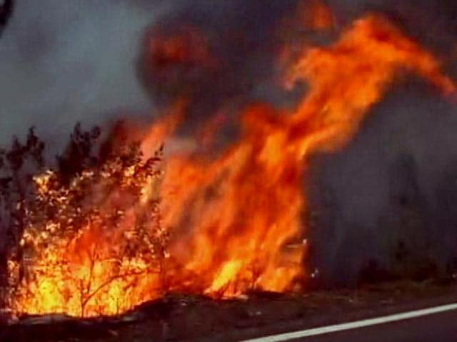 Video : Fire Out In 70 Per Cent Of Affected Areas In Uttarakhand