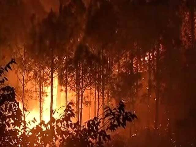Videos : प्राइम टाइम इंट्रो : उत्तराखंड की आग इतनी भयानक क्यों हुई?