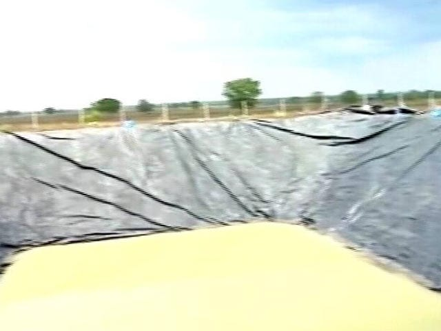 Video : Taking Lessons From Drought, Marthawada Farmers Turn To DIY Initiatives