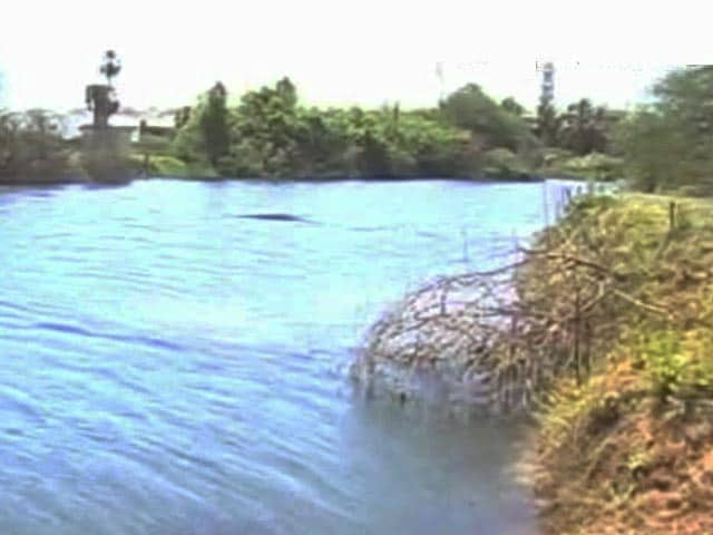 Video : Residents Clean-Up Chennai Lakes