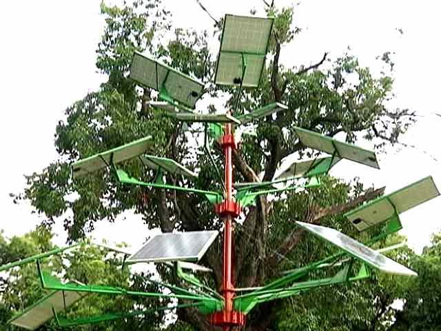 दिल्ली में लगाए गए दिलचस्प पेड़, घरों को मुहैया करेंगे बिजली