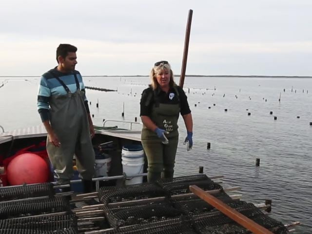 Video : Here's Why A Visit To Smoky Bay Is A Must!