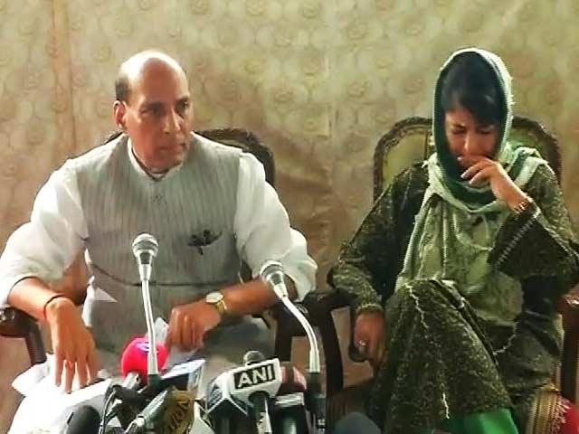 Alternative To Pellet Guns Soon In Kashmir, Says Rajnath Singh