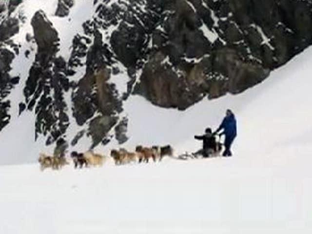 Snow-Filled Adventures In Switzerland