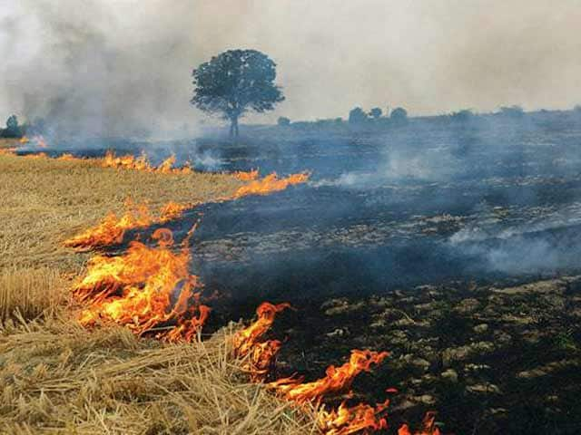 Video : प्रदूषण पर नेशनल ग्रीन ट्रिब्यूनल ने मांगी रिपोर्ट