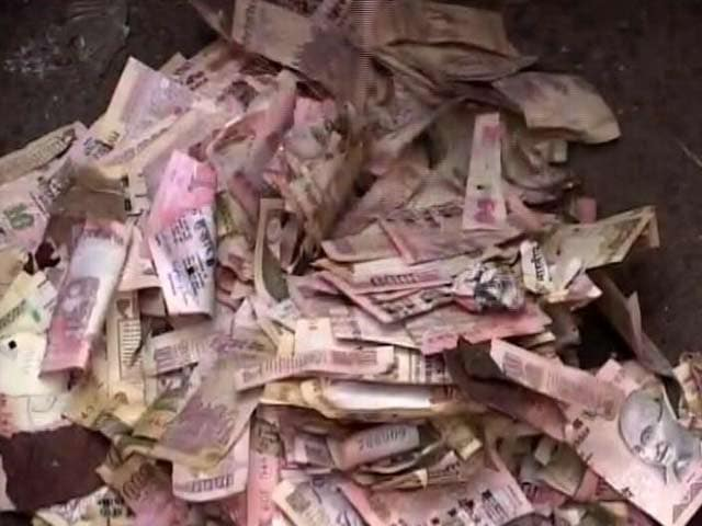 Video : 2 Sacks Of Torn 500, 1,000 Rupee Notes Found In Posh Kolkata Area