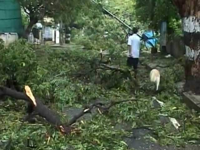 Video : Chennai Recovers After Cyclone Vardah, 10 Dead