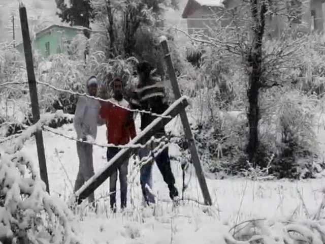 Video : Patnitop Experiences Its First Snowfall Of The Season, Tourists Overjoyed