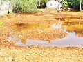 Kerala toxic hazard: government steps in, acquires affected land