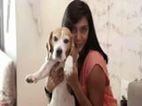 Heavy Petting All Stars: Meet TV star Shweta Salve and her pet Beagle