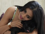 Heavy Petting All Stars: Make Way for Mahie Gill and Her Pug Dona Gill