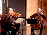 Video: Experience the Magic of Strings With Kodaly String Quartet, Budapest