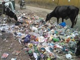 Video: Swachh Bharat Abhiyan: On a Day of Photo Ops, Cleanliness Workers Want More