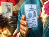 Video : Gujarat is First State to Make Voting a Must in Local Body Polls