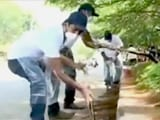 Video : Citizens Clean Up Bangalore's Civic Mess