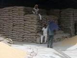 Videos : गेहूं बिकने का इंतजार कर रहे हैं पंजाब के किसान