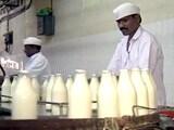 Videos : महाराष्ट्र : दूध के समर्थन मूल्य के लिए अध्यादेश की तैयारी