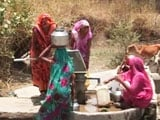 Video : Madhya Pradesh's Vidisha Constituency Hit Hard by Water Scarcity