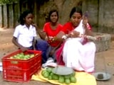 Video : क्यों आम बेच रही हैं बीजेपी नेता करिया मुंडा की बेटी?