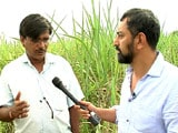 Video: Truth vs Hype: Marathwada's Unequal Fields