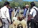 Video : ईद पर जम्मू-कश्मीर में इंटरनेट सेवा बंद