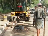 Video: A Python Is 'Swallowing' Bengaluru's Potholes One at a Time