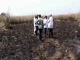 Video : Burnt Crops, Threats Pave Way for New Andhra Capital, Activists Allege