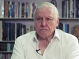Video: Exclusive Interview With Sir David Attenborough