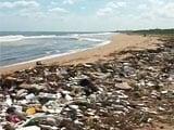 Video : Heavy Rains Flood Chennai Beaches With Garbage