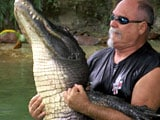 Video: Alligator Wrestlers Struggle to Keep Florida Tradition Alive