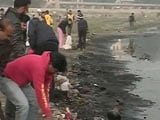 Video: 'Stench at the Yamuna Ghat is Overpowering': Swachh India Volunteer