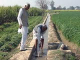 Video: ऑर्गेनिक फ़ार्मिंग में नए प्रयोग, कम ज़मीन पर ज़्यादा पैदावार