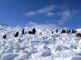 Video : सियाचिन : छह दिन बाद 25 फीट बर्फ के नीचे से जिंदा निकला जवान