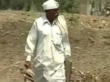 Video : In Drought-Hit Marathwada, Farmers Say Government Relief Schemes Fails Them