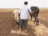 Video : Why Farmers in India Should Opt for Organic Farming