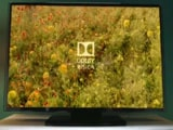 Video: A Television Revolution