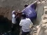 Video : In Parched Maharashtra, 11-Year-Old Dies Getting Water From Near-Dry Well