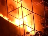 Video : Delhi's Iconic Natural History Museum Destroyed In Fire