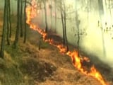 Video: Uttarakhand Forest Fires Now On 88th Day; 6,000 People At Work
