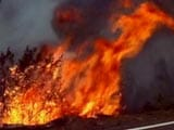 Fire Out In 70 Per Cent Of Affected Areas In Uttarakhand