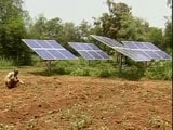 Video : With Solar Power, A Gujarat Village Is Irrigating Its Fields For Free