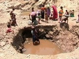 Video: In This Drought-Hit Village, Women Scoop Water From Pits To Survive