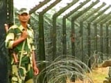 Video: Checking Bangladesh Infiltration Holds Challenges For Assam Government