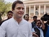 Video : राहुल गांधी हुए 46 साल के, कांग्रेस कार्यकर्ताओं के बीच मनाया अपना जन्मदिन